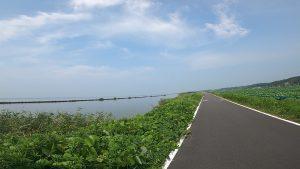 霞ヶ浦 湖畔